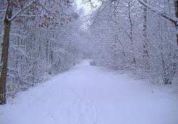 Neve in tempo reale: