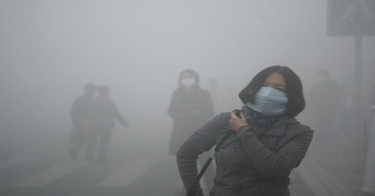 Virus e inquinamento